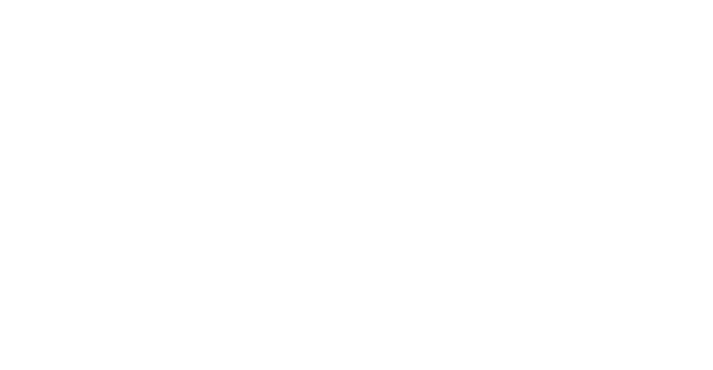 Fuel Sistems logo-02